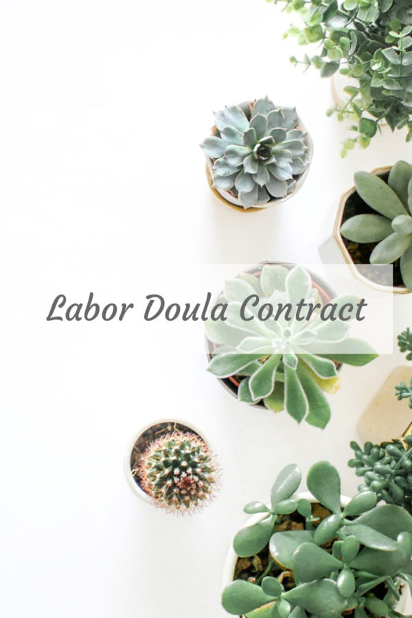 Birth doula contract